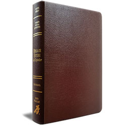 SPANISH EDITION, EXPOSITOR'S STUDY BIBLE,  LEATHER